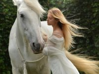 Tips on Successful Horse Boarding